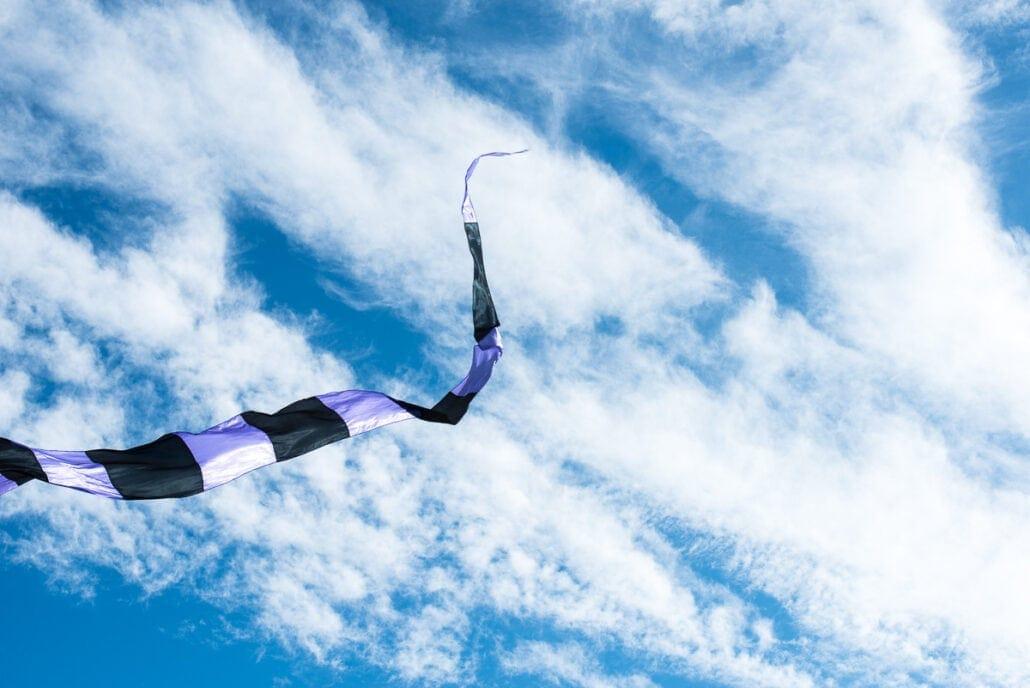 Showable Art - Kite flying in Port Aransas, Texas